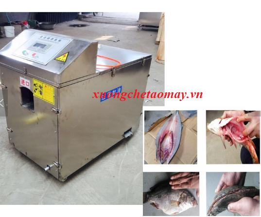 máy mổ ruột cá công nghiệp