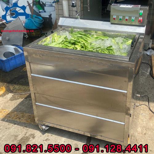 máy rửa thực phẩm sục khí ozone